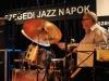 Szegedi-Jazz-napok-20117